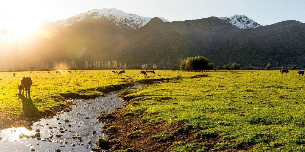 Argentina Patagonia Landscape