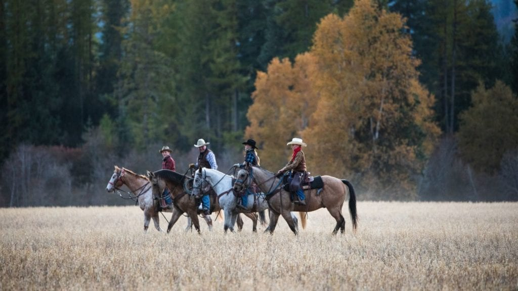 horses and riders in a field at dude ranch Western Pleasure Guest Ranch