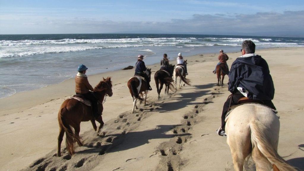Salinas River – Beach Horseback Riding in Moss Landing