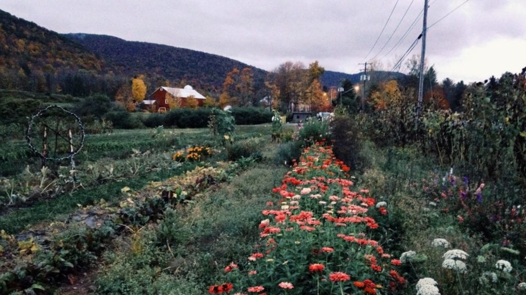 farm with rows of flowers and barn in the Catskills, one of the best vacation spots for couples