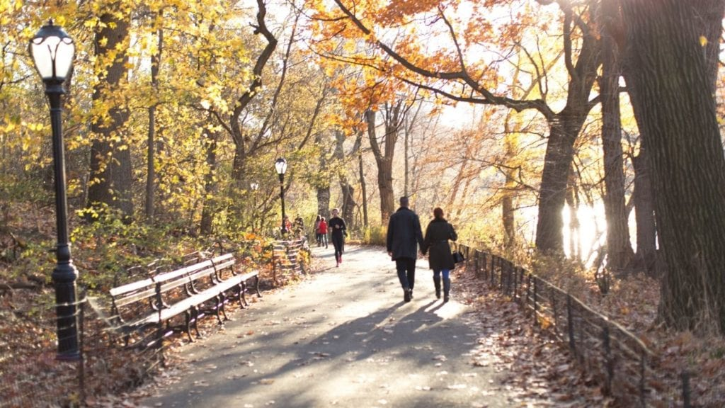 Couple walking in Central Park, New York City (Photo: @brightideasfl via Twenty20)