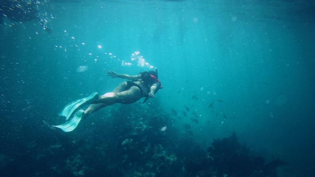 Snorkeling in Key Largo, Florida (Photo: @carbonem via Twenty20)