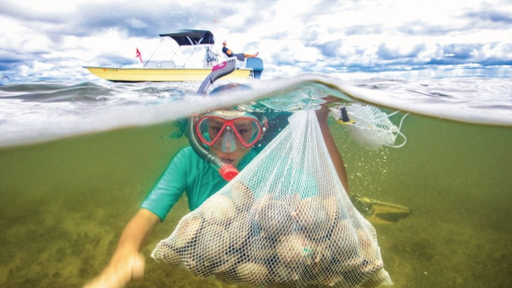 Hunting for scallops is one of the unique things you can do along Florida's Gulf Coast (Photo: Discover Crystal River Florida)